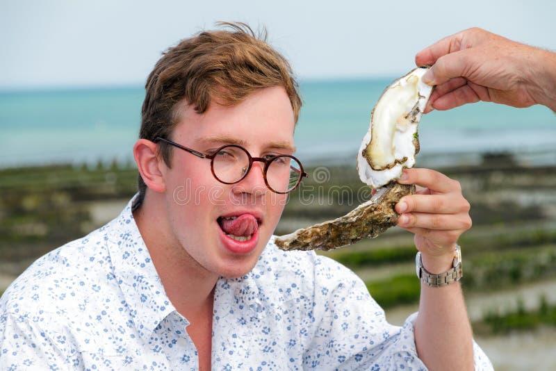 Apprécier une huître cheval pie de De photo libre de droits