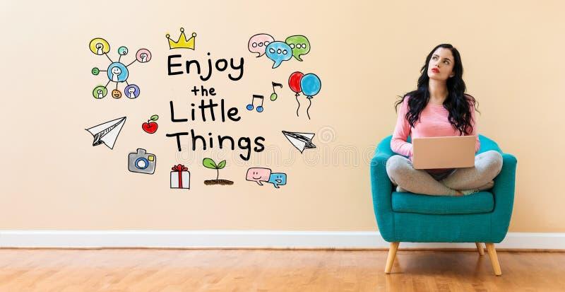 Appréciez les petites choses avec la femme à l'aide d'un ordinateur portable illustration stock