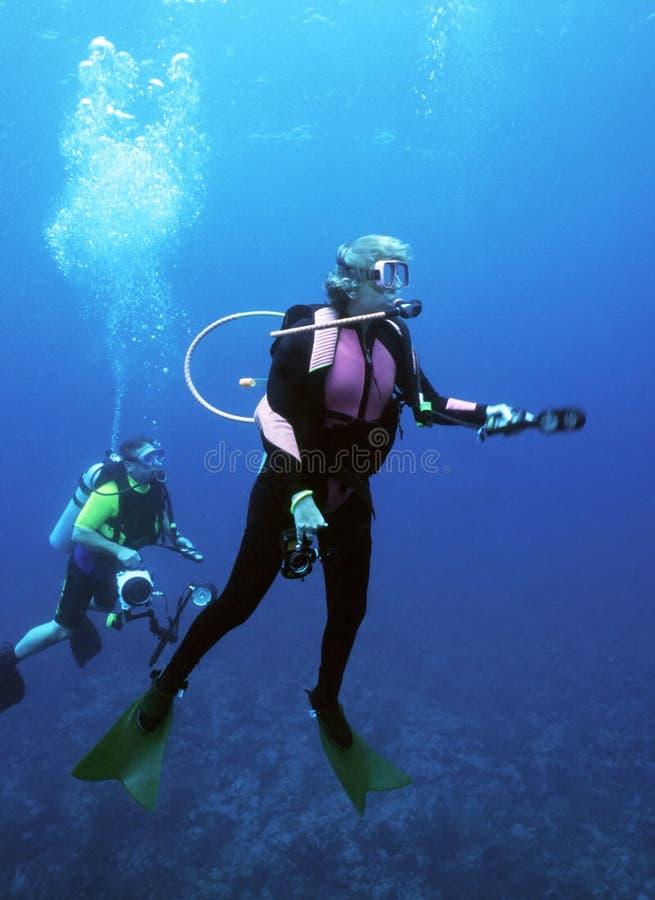 Apprêtage femelle de plongeur photo stock