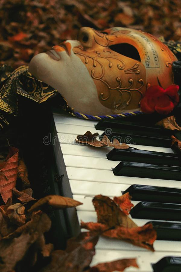 Free Appreciating Arts Among Autumn Leaves Stock Images - 104506624