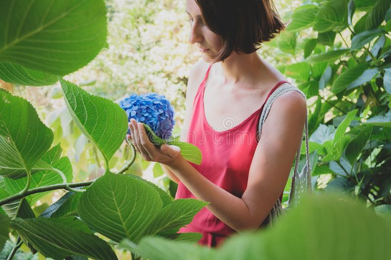 Girls and plants: portrait of a beautiful woman among green leaves holding a blue plant. stock photography