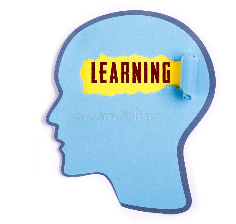 Apprendimento della parola nella testa della persona immagine stock libera da diritti