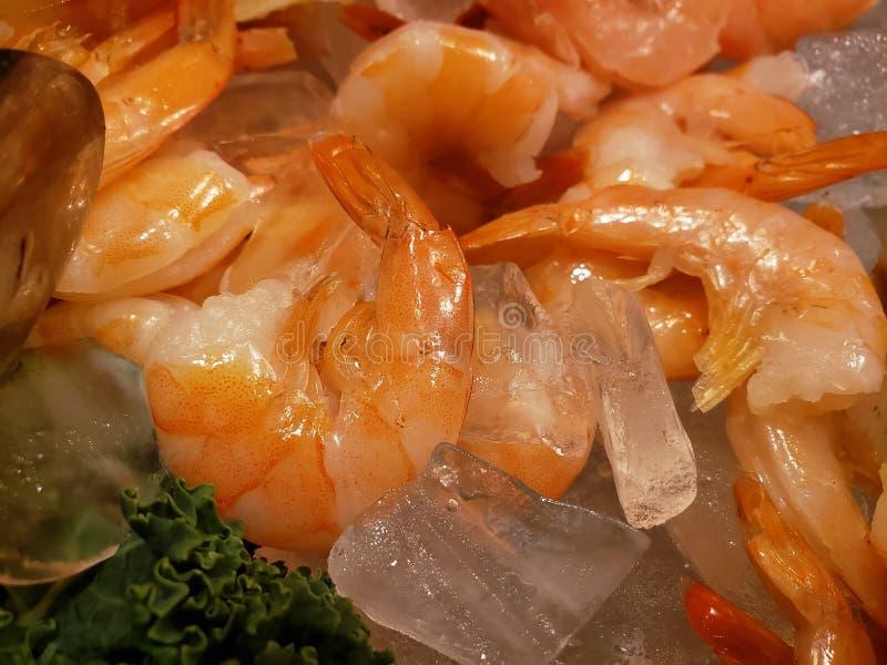 approche à la glace, au fond et à la texture de witt de crevette images libres de droits