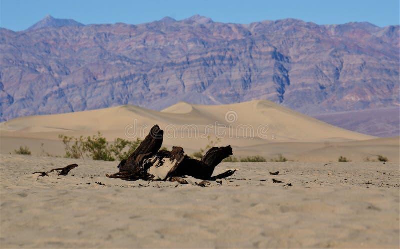 Approching Death Valley, California fotografia stock libera da diritti