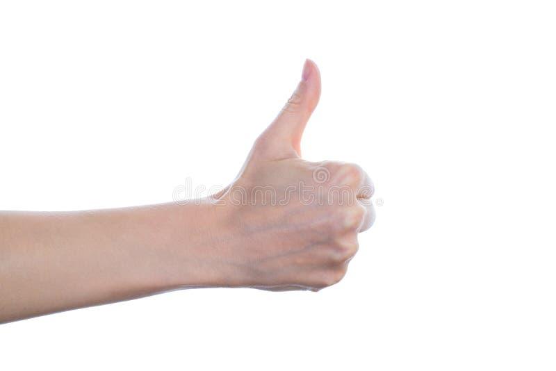 Approvazione approvare per accettare benissimo concetto felice positivo di prima convalida eccellente Fine laterale di profilo su fotografia stock libera da diritti