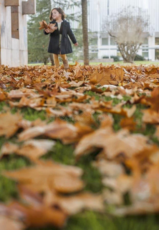 Appy mała dziewczynka bawić się z jesień liśćmi w parku zdjęcie stock