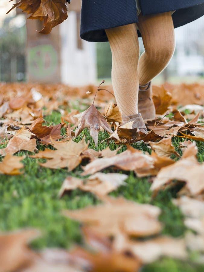Appy mała dziewczynka bawić się z jesień liśćmi w parku obraz stock