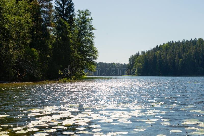 Apr?s-midi d'?t? d'Uzhin de lac photo stock