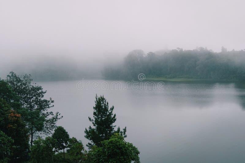 Après pluie dans le côté de lac image libre de droits