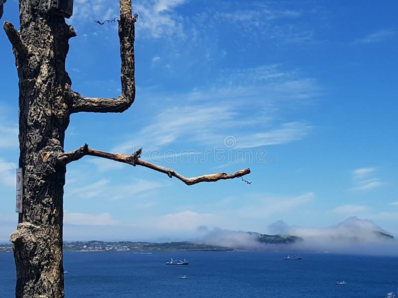 Après rainning Udo en île de Jeju images stock