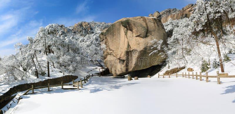 Après un beau premier plan de neige de lumière de paysage image stock