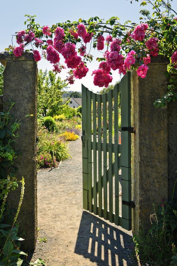 Apra il cancello di giardino con le rose fotografia stock libera da diritti