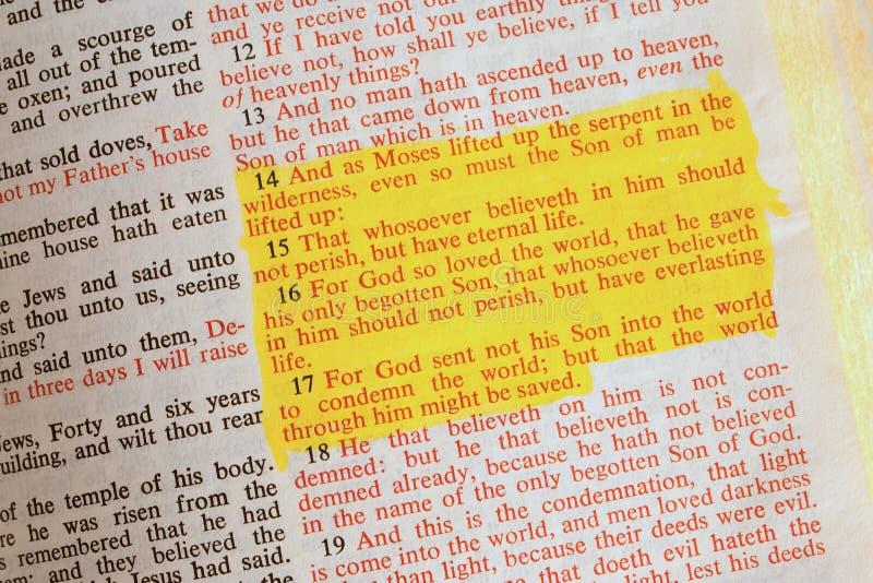 Apra la bibbia fotografie stock libere da diritti