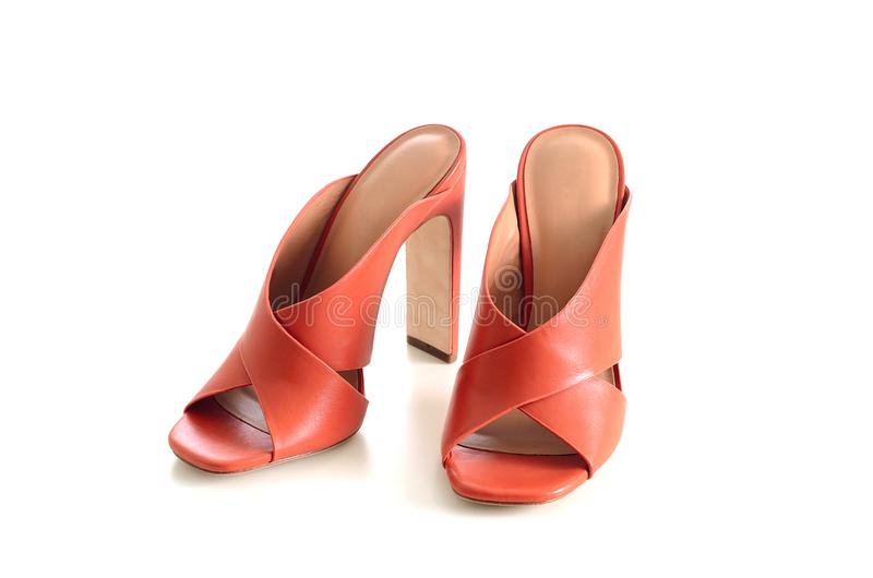 Apra le scarpe di cuoio trasversali del mulo dei criss del dito del piede isolate su backgr bianco fotografia stock