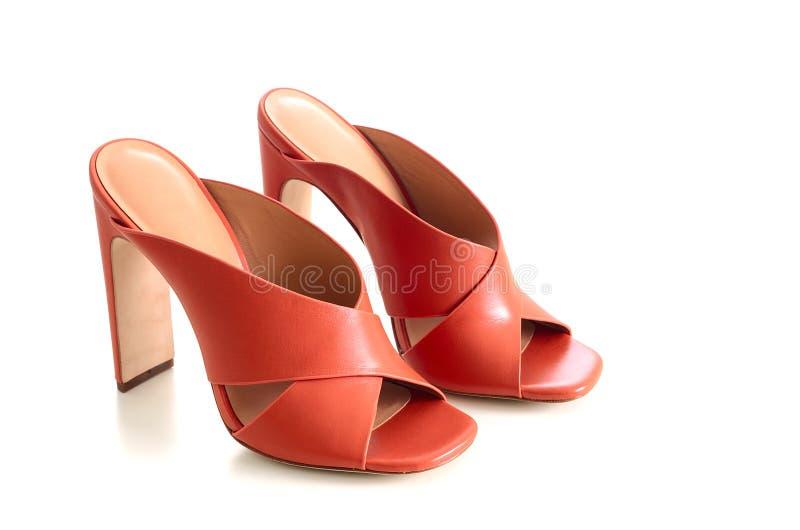 Apra le scarpe di cuoio trasversali del mulo dei criss del dito del piede isolate su backgr bianco fotografia stock libera da diritti