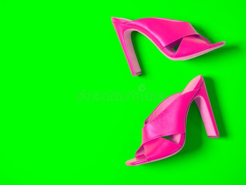 Apra le scarpe di cuoio trasversali del mulo dei criss del dito del piede Sandali di estate di modo fotografia stock libera da diritti