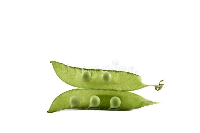 Apra Pea Pod verde fotografia stock libera da diritti