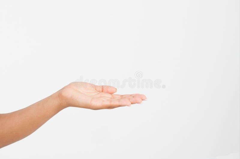 Apra una mano del ` s della donna di colore, palma su isolata su fondo bianco Front View Derisione su Copi lo spazio mascherina b fotografie stock