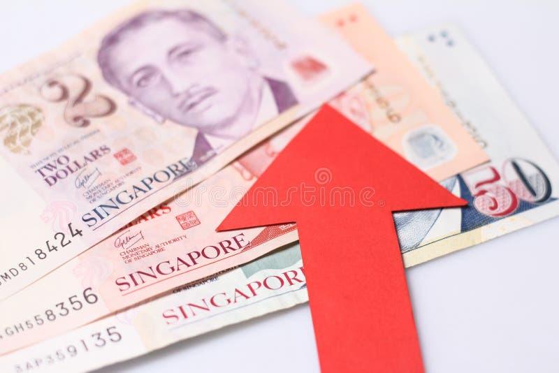Apreciação do dólar de Cingapura fotografia de stock royalty free
