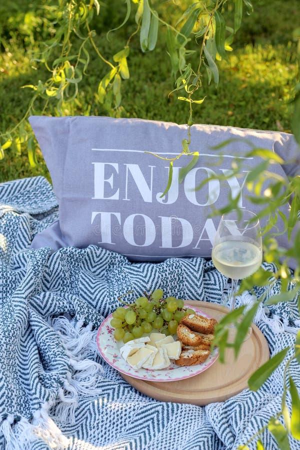 Apreciação hoje em um piquenique na grama com um vidro do vinho e dos petiscos fotos de stock