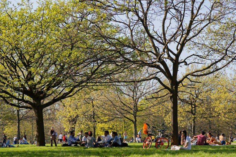 Apreciando a mola em Hyde Park fotos de stock royalty free