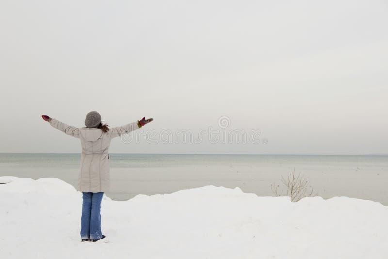 Apreciando o inverno imagens de stock