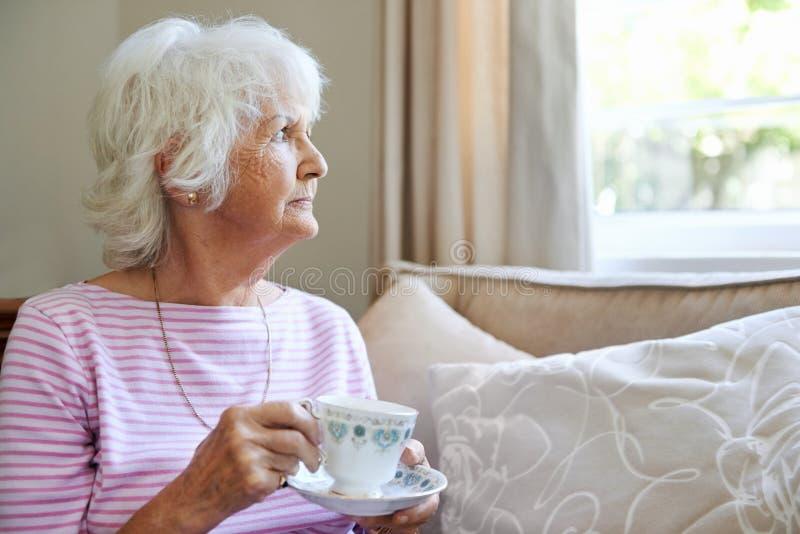 Apreciando um copo do chá fotografia de stock