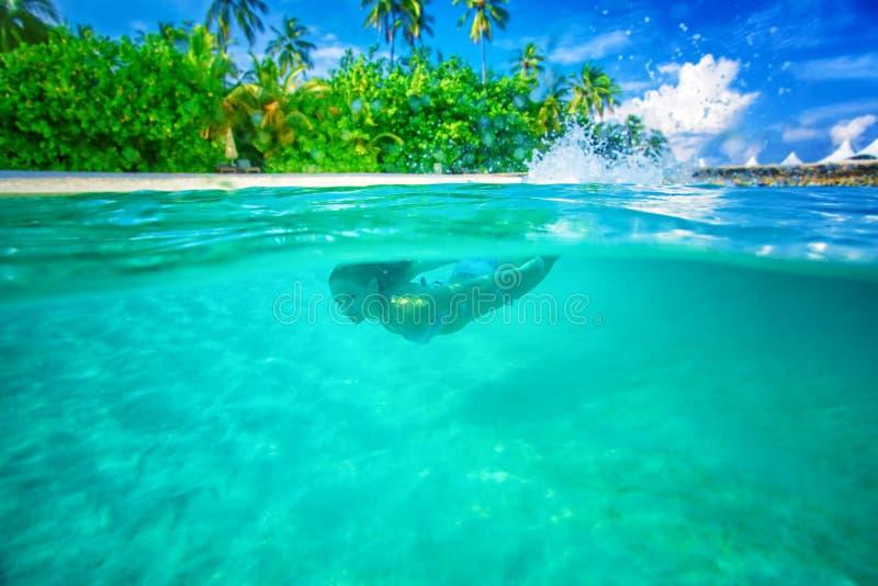 Apreciando a vida marinha foto de stock royalty free