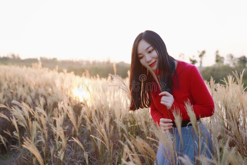 Aprecie no sol do outono, no suporte bonito novo da mulher na grama e no sorriso no por do sol do outono Natureza, natural imagens de stock royalty free