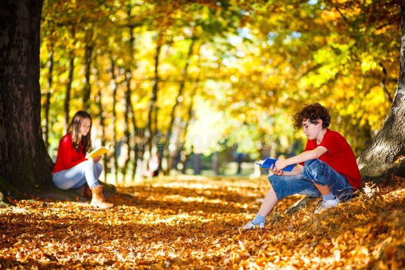 Aprendizagem dos estudantes exterior fotografia de stock royalty free