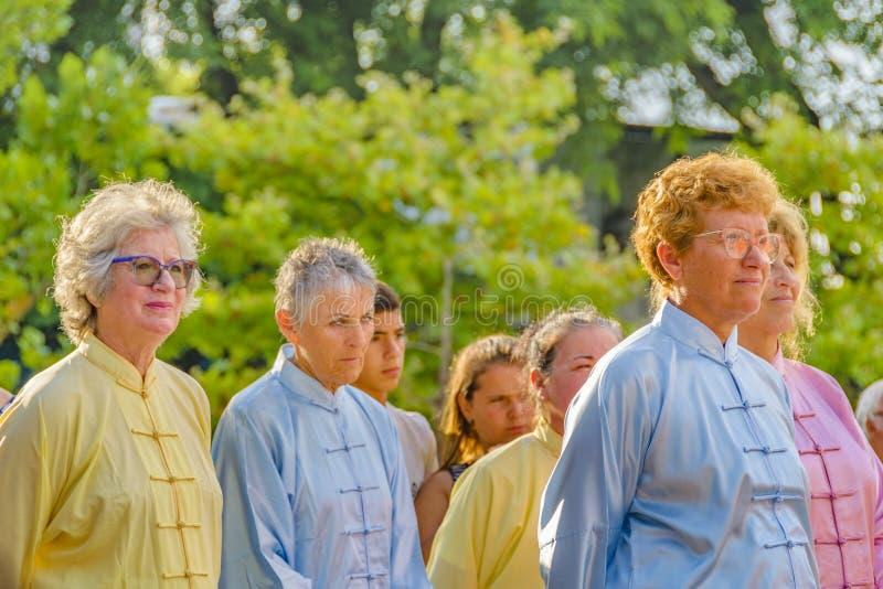 Apresentação de Tai Chi Seniors Standing Before fotos de stock royalty free