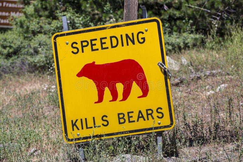 Apressar-se mata o sinal de aviso dos ursos imagens de stock royalty free