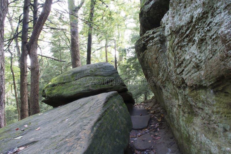 Apretón apretado, bosque del estado de las colinas de Hocking foto de archivo libre de regalías