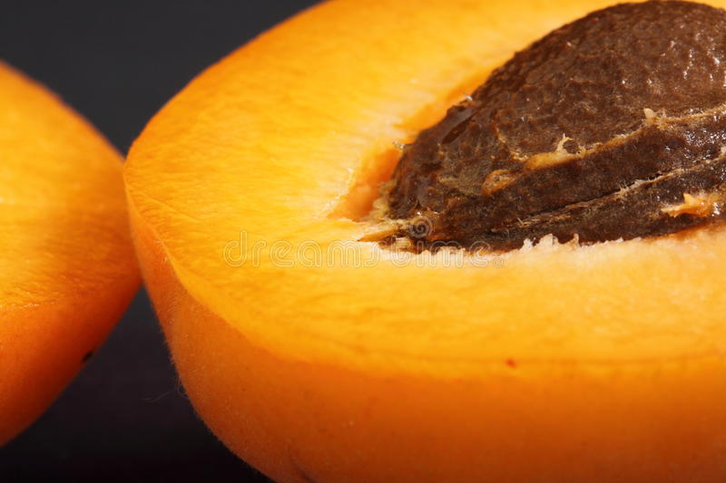 Download Apricot stock image. Image of flesh, stone, healthy, sweet - 10119121
