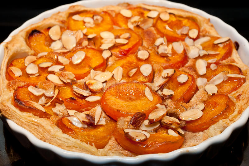 Apricot and almond tart stock image