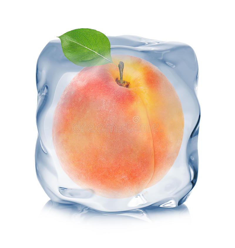 Apricot frozen in the ice cube close-up on white background.  stock photo