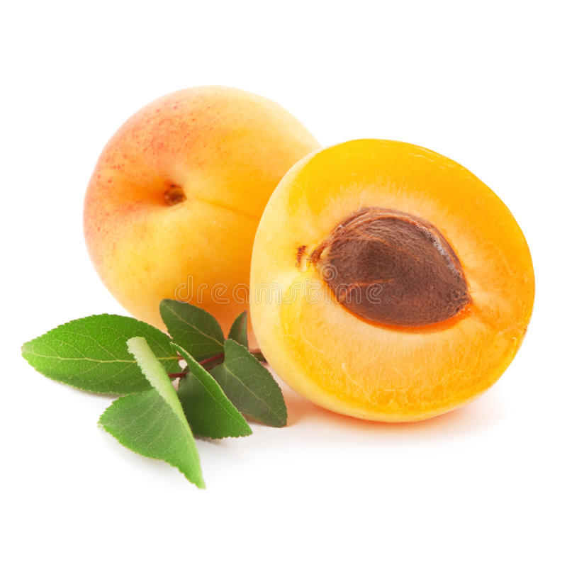 Apricot fruits royalty free stock photos