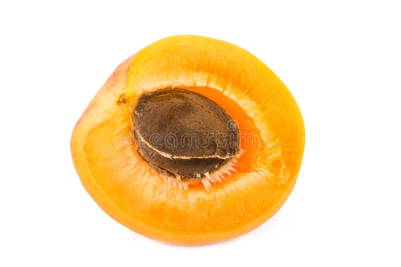 Apricot half with fruit kernel on white. Closeup. stock photo