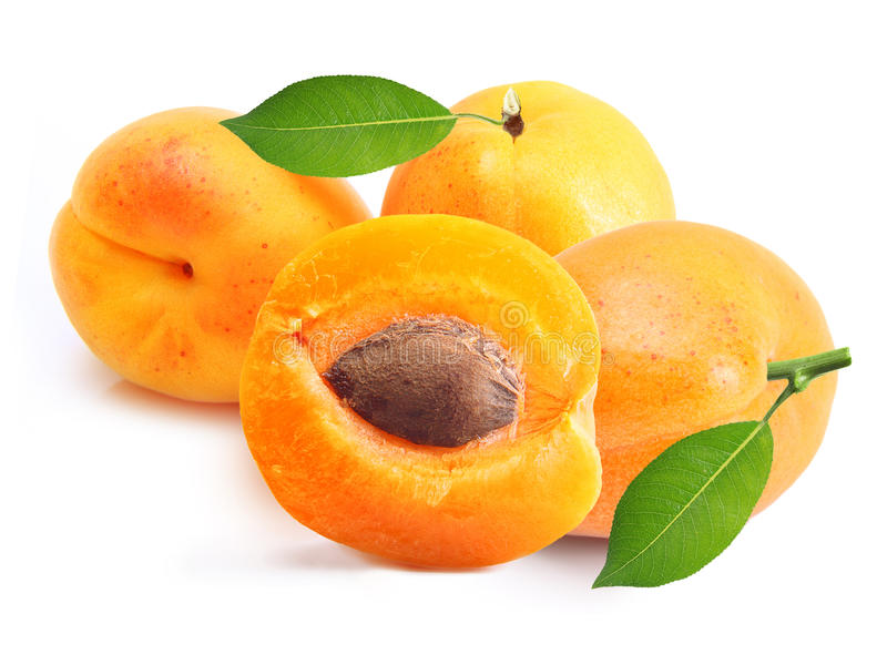 Apricot Isolated Royalty Free Stock Images