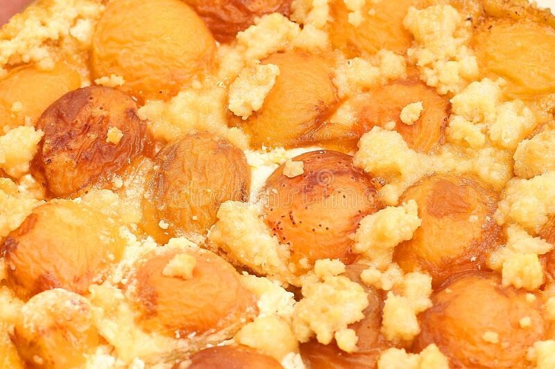 Apricot pie with cottage cheese surface close up photo royalty free stock images