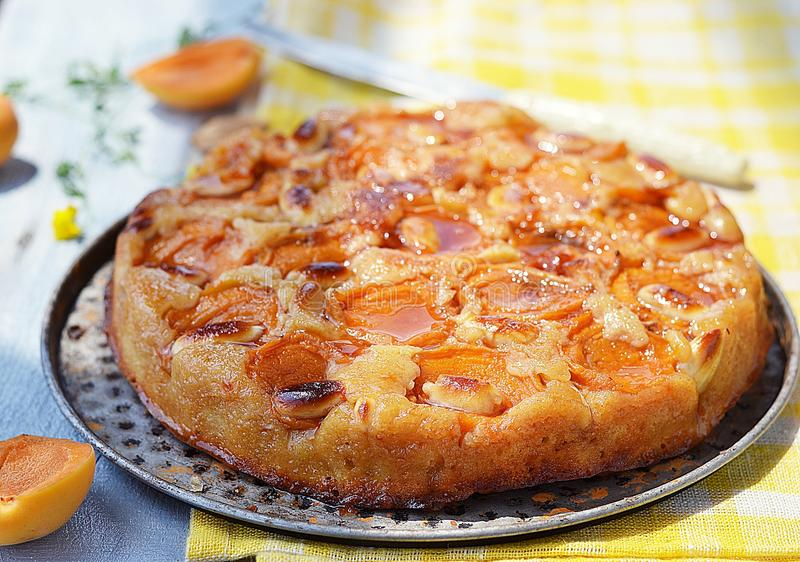 Apricot pie. With ripe apricot fruits royalty free stock images