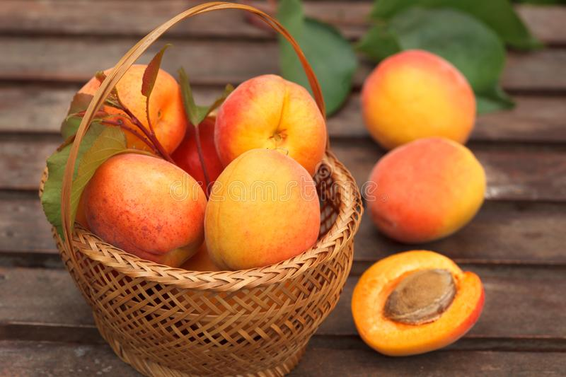 Ripe Organic Apricots in wicker basket with fresh leaves on a  wooden table stock photography