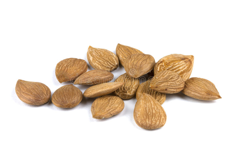 Download Apricot seeds stock image. Image of health, energy, dried - 17508435