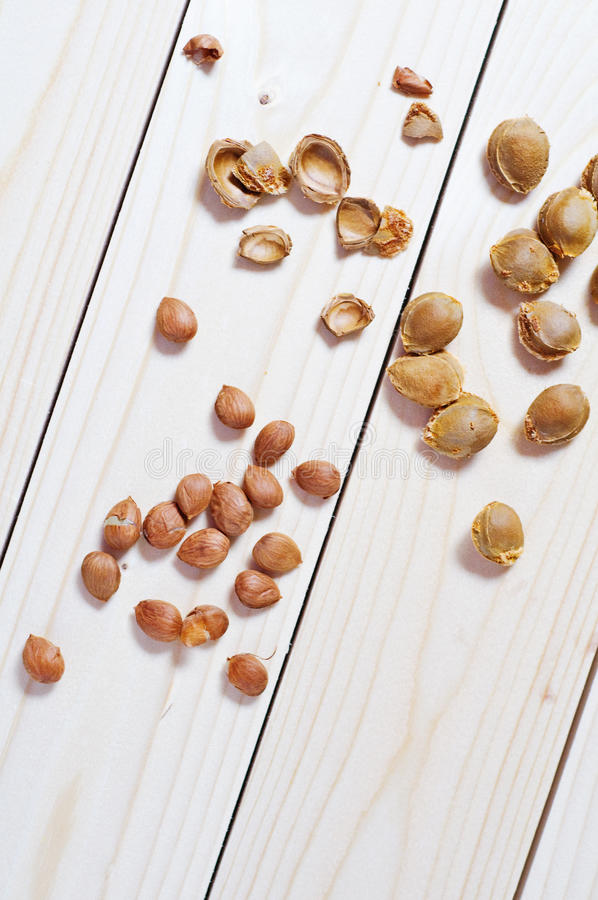 Download Apricot seeds and shells stock image. Image of bitter - 26567511