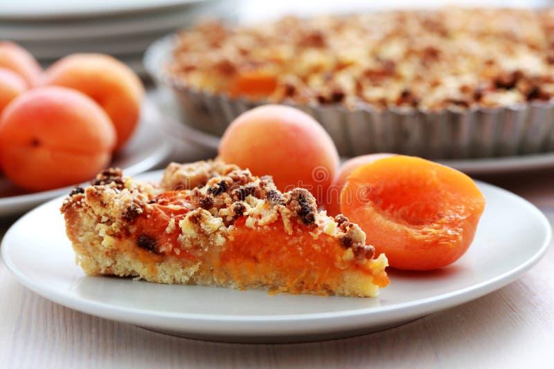 Apricot tart royalty free stock photos