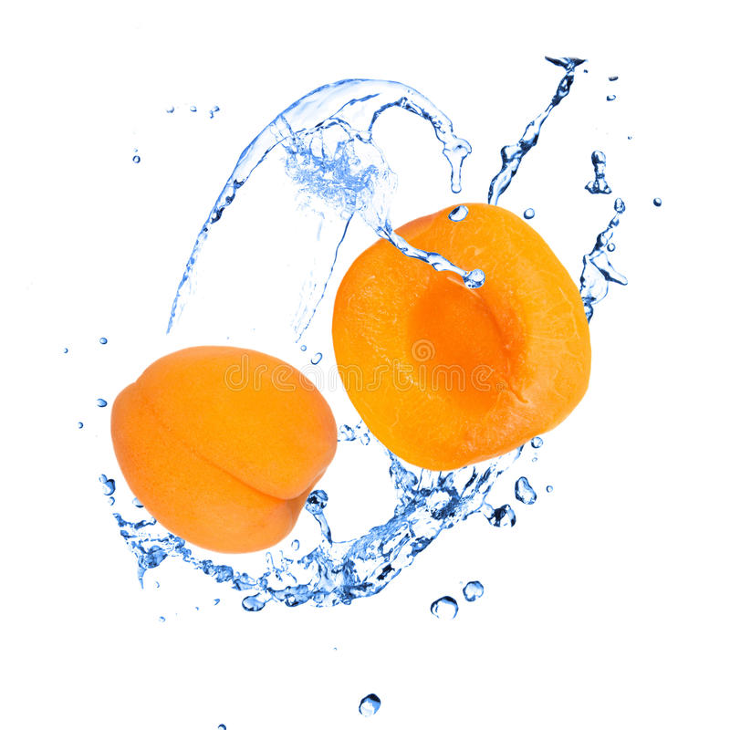 Apricot with water splash. Over white royalty free stock image