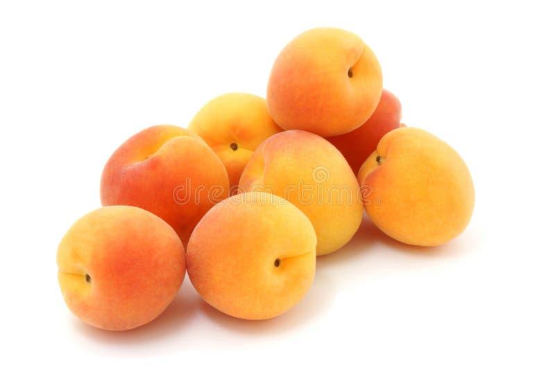 Apricots. royalty free stock photo