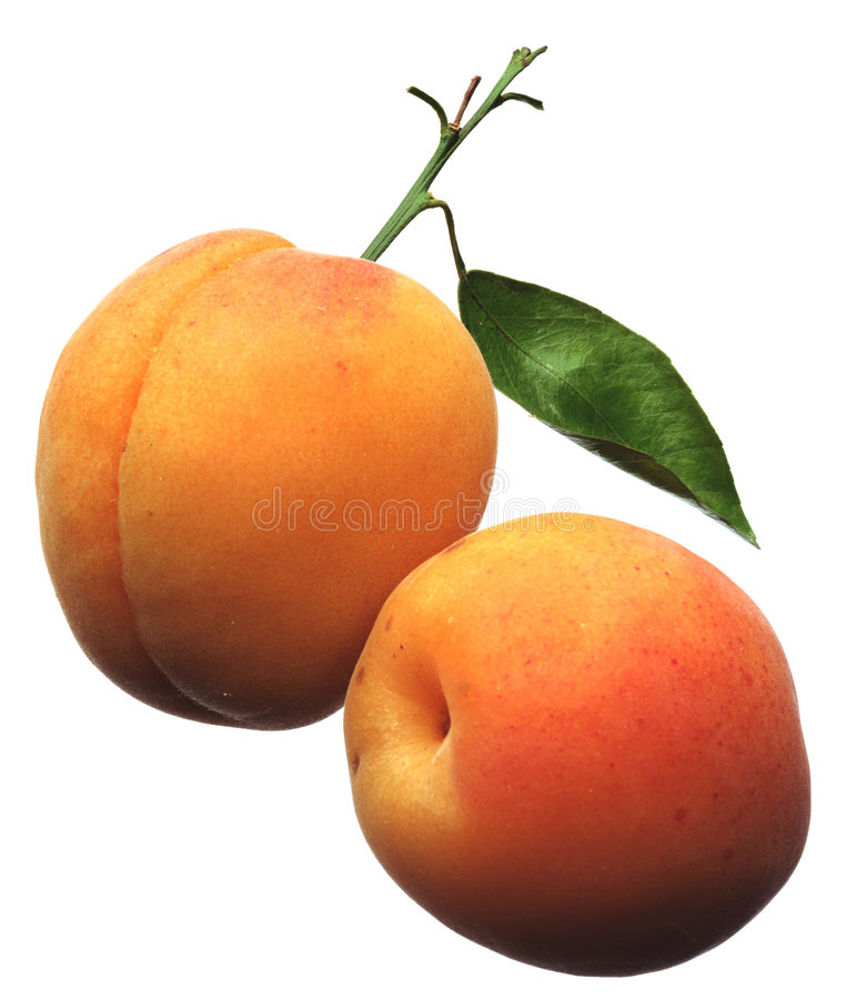 Free Apricots Stock Images - 1127754