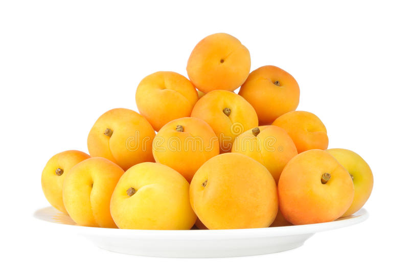 Download Apricots stock photo. Image of plate, isolated, fruit - 21730312