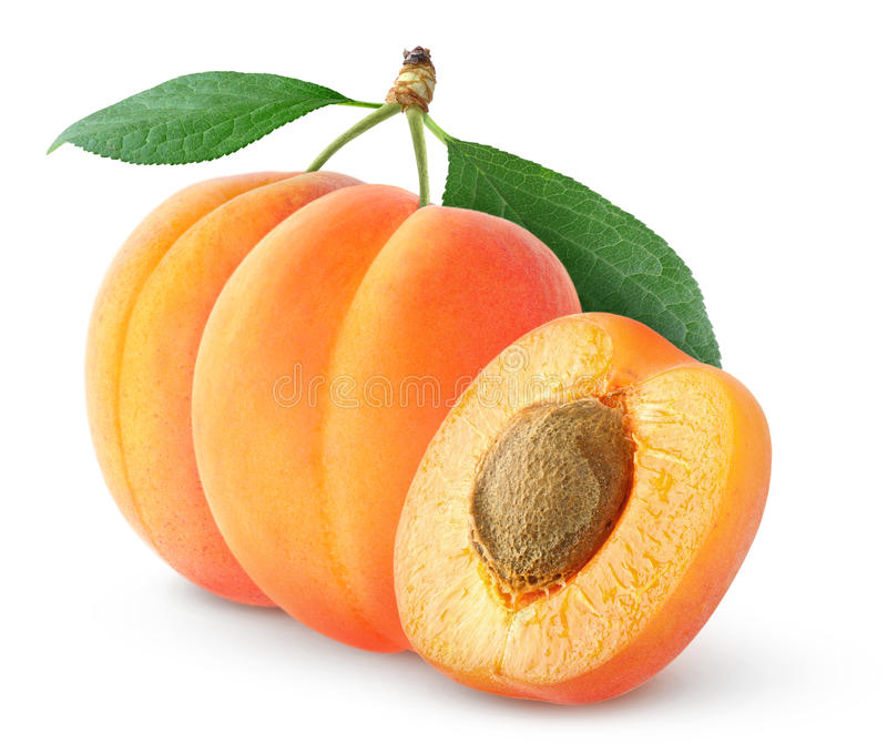 Download Apricots stock image. Image of white, freshness, food - 25605901